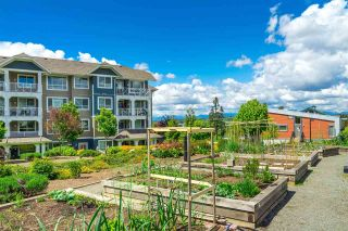 """Photo 21: 410 16380 64 Avenue in Surrey: Cloverdale BC Condo for sale in """"The Ridge at Bose Farms"""" (Cloverdale)  : MLS®# R2573583"""