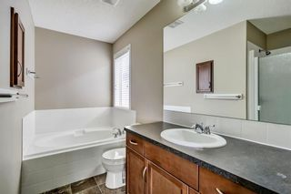 Photo 25: 51 Skyview Springs Cove NE in Calgary: Skyview Ranch Detached for sale : MLS®# C4186074