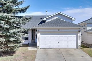 Main Photo: 287 Applewood Drive SE in Calgary: Applewood Park Detached for sale : MLS®# A1092984