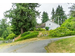"""Photo 37: 3003 208 Street in Langley: Brookswood Langley House for sale in """"Brookswood Fernridge"""" : MLS®# R2557917"""