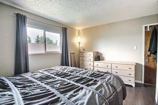 Photo 17: 159 Falton Way NE in Calgary: Falconridge Detached for sale : MLS®# A1113632