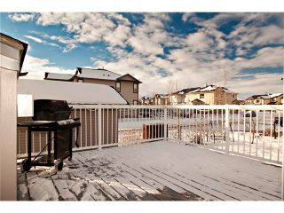 Photo 33: 48 COUGARSTONE Court SW in Calgary: Cougar Ridge House for sale : MLS®# C4045394