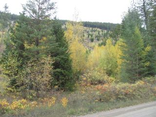 Photo 15: 80 Acres Creighton Valley Road, in Lumby: Vacant Land for sale : MLS®# 10239894