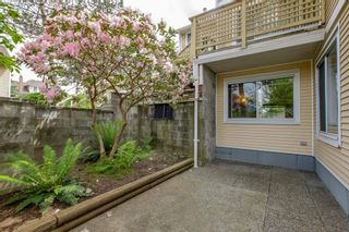 """Photo 17: 2 2223 ST JOHNS Street in Port Moody: Port Moody Centre Townhouse for sale in """"PERRY'S MEWS"""" : MLS®# R2363236"""