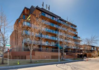 Photo 1: 209 1900 25A Street SW in Calgary: Richmond Apartment for sale : MLS®# A1101426