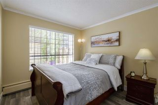 """Photo 5: 101 206 E 15TH Street in North Vancouver: Central Lonsdale Condo for sale in """"Lions Gate Manor"""" : MLS®# R2569602"""
