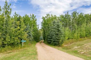 Photo 46: 24124 TWP RD 554: Rural Sturgeon County House for sale : MLS®# E4260651