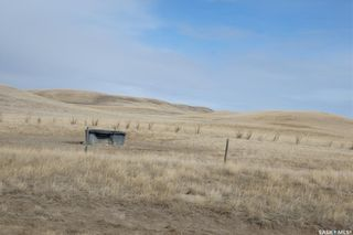 Photo 43: Dean Farm in Willow Bunch: Farm for sale (Willow Bunch Rm No. 42)  : MLS®# SK845280