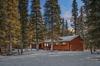 Photo 48: 4 Manyhorses Gardens: Bragg Creek Detached for sale : MLS®# A1069836