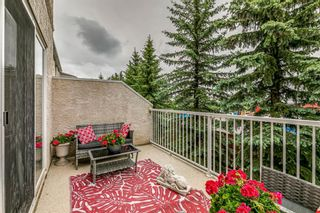 Photo 15: 109 Country Hills Gardens NW in Calgary: Country Hills Semi Detached for sale : MLS®# A1136498