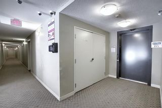 Photo 8: 1214 1317 27 Street SE in Calgary: Albert Park/Radisson Heights Apartment for sale : MLS®# A1070398