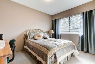 Photo 13: 11998 210TH Street in Maple Ridge: Southwest Maple Ridge House for sale : MLS®# R2553047