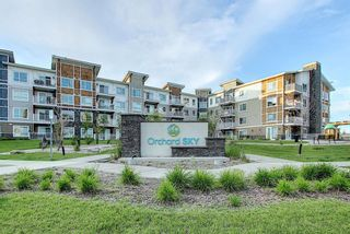 Photo 1: 3205 302 Skyview Ranch Drive NE in Calgary: Skyview Ranch Apartment for sale : MLS®# A1077085