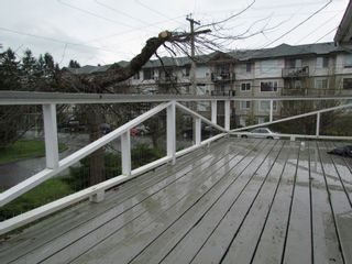 Photo 14: 2941 BOULDER Street in ABBOTSFORD: Central Abbotsford House for rent (Abbotsford)