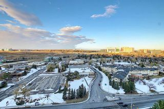 Photo 34: 2007 145 Point Drive NW in Calgary: Point McKay Apartment for sale : MLS®# A1044605