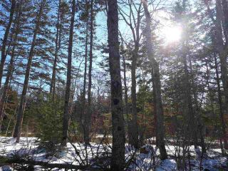 Photo 10: LOT Stronach Mountain Road in Forest Glade: 400-Annapolis County Vacant Land for sale (Annapolis Valley)  : MLS®# 201924165