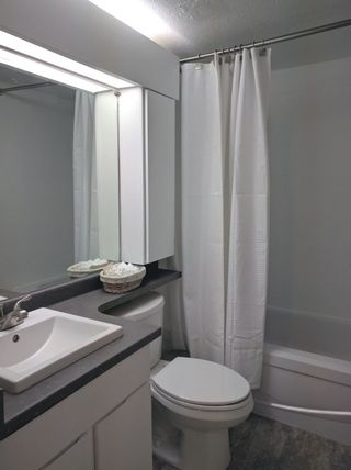 """Photo 12: 103 225 MOWAT Street in New Westminster: Uptown NW Condo for sale in """"THE WINDSOR"""" : MLS®# R2070108"""