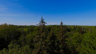 Photo 10: River John Road in Sundridge: 108-Rural Pictou County Vacant Land for sale (Northern Region)  : MLS®# 202115166