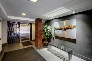 Photo 3: 101 1027 Cameron Avenue SW in Calgary: Lower Mount Royal Apartment for sale : MLS®# A1062021