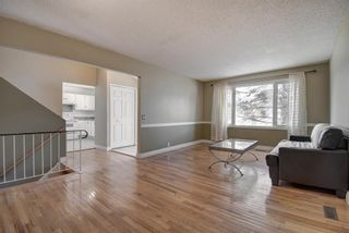 Photo 3: 14 Radcliffe Crescent SE in Calgary: Albert Park/Radisson Heights Detached for sale : MLS®# A1085056
