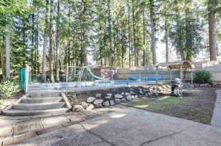 Photo 22: 3650 203A Street in Langley: Brookswood Langley House for sale : MLS®# R2542609
