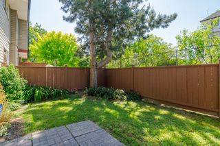 "Photo 29: 192 27456 32 Avenue in Langley: Aldergrove Langley Townhouse for sale in ""Cedar Park"" : MLS®# R2371784"