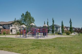 Photo 50: 160 Brightonstone Gardens SE in Calgary: New Brighton Detached for sale : MLS®# A1009065