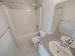 Photo 29: 2835 200 Street in Edmonton: Zone 57 House for sale : MLS®# E4240689