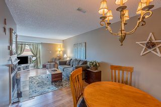 Photo 11: 132 70 WOODLANDS Road: St. Albert Carriage for sale : MLS®# E4261365