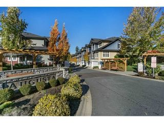 """Photo 20: 2 18199 70 Avenue in Surrey: Cloverdale BC Townhouse for sale in """"AUGUSTA"""" (Cloverdale)  : MLS®# R2216334"""