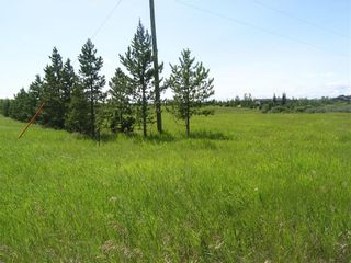 Photo 3: 81230 2378 Drive E: Rural Foothills County Land for sale : MLS®# A1063147