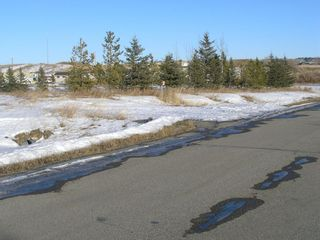 Photo 4: 81230 2378 Drive E: Rural Foothills County Land for sale : MLS®# A1063147