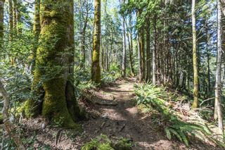 Photo 93: Lot 2 Eagles Dr in : CV Courtenay North Land for sale (Comox Valley)  : MLS®# 869395