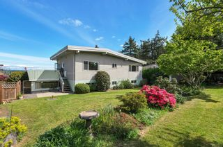 Photo 5: 232 McCarthy St in : CR Campbell River Central House for sale (Campbell River)  : MLS®# 874727