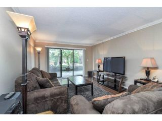 "Photo 17: 101 12170 222 Street in Maple Ridge: West Central Condo for sale in ""Wildwood Terrace"" : MLS®# R2167394"