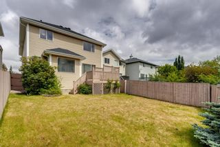 Photo 43: 131 Citadel Crest Green NW in Calgary: Citadel Detached for sale : MLS®# A1124177