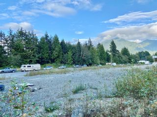 Photo 3: 523 Gibson St in : PA Tofino Land for sale (Port Alberni)  : MLS®# 856347