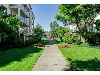 "Photo 8: 308 20443 53 Avenue in Langley: Langley City Condo for sale in ""Countryside Estates"" : MLS®# R2261677"