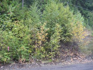 Photo 5: 12 Vickers Trail in Anglemont: Land Only for sale : MLS®# 10055802
