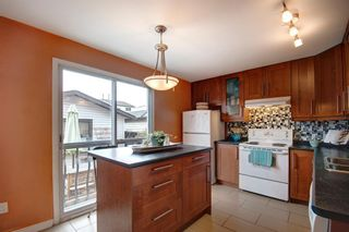 Photo 14: 40 Abergale Way NE in Calgary: Abbeydale Detached for sale : MLS®# A1093008