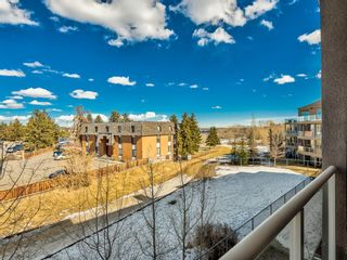 Photo 23: 307 2 HEMLOCK Crescent SW in Calgary: Spruce Cliff Apartment for sale : MLS®# A1076782
