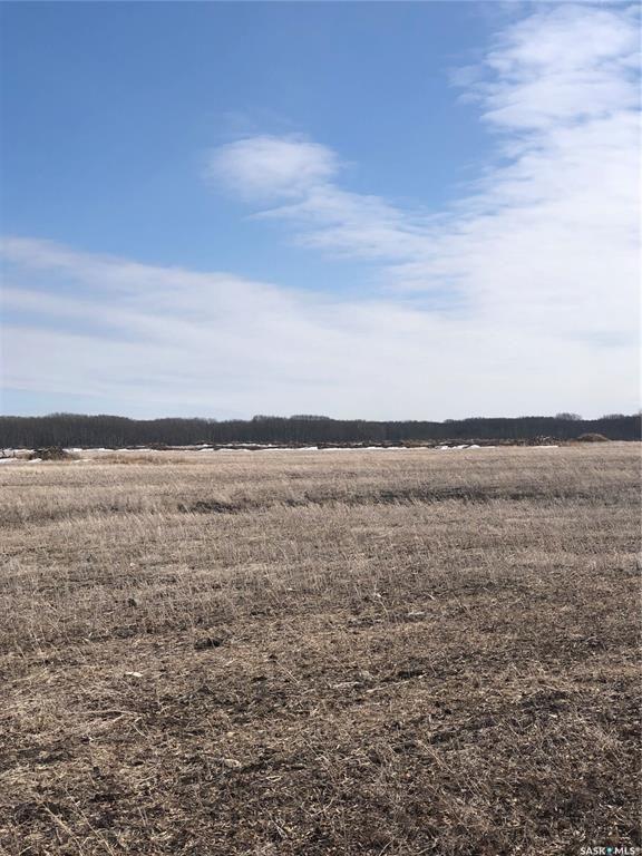 Main Photo: New land in Hudson Bay: Farm for sale (Hudson Bay Rm No. 394)  : MLS®# SK846735