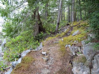 Photo 15: 320 Huck Rd in : Isl Cortes Island House for sale (Islands)  : MLS®# 863187