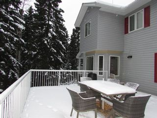 Photo 28: 20 Alder Green Close Other SE: Rural Clearwater County Detached for sale : MLS®# A1049287