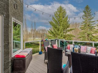 Photo 18: 54 Mount Robson Close SE in Calgary: McKenzie Lake Detached for sale : MLS®# A1096775
