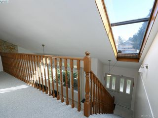 Photo 19: 1592 Thelma Pl in VICTORIA: SE Mt Doug House for sale (Saanich East)  : MLS®# 835420