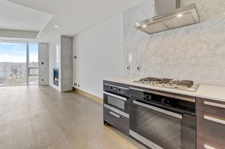 Photo 11: 906 738 1 Avenue SW in Calgary: Eau Claire Apartment for sale : MLS®# A1073632