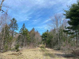 Photo 18: Lots Hectanooga Road in Mayflower: 401-Digby County Vacant Land for sale (Annapolis Valley)  : MLS®# 202118142