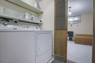 Photo 35: 3708 108 Street in Edmonton: Zone 16 House for sale : MLS®# E4255030