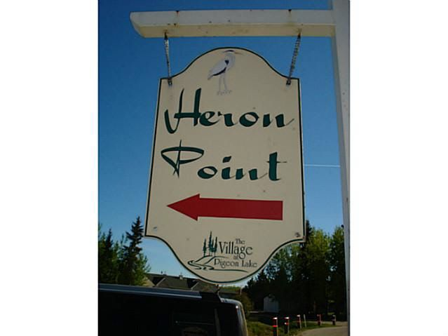 Main Photo: 41 Heron Point Cl: Rural Wetaskiwin County Rural Land/Vacant Lot for sale : MLS®# E4233949
